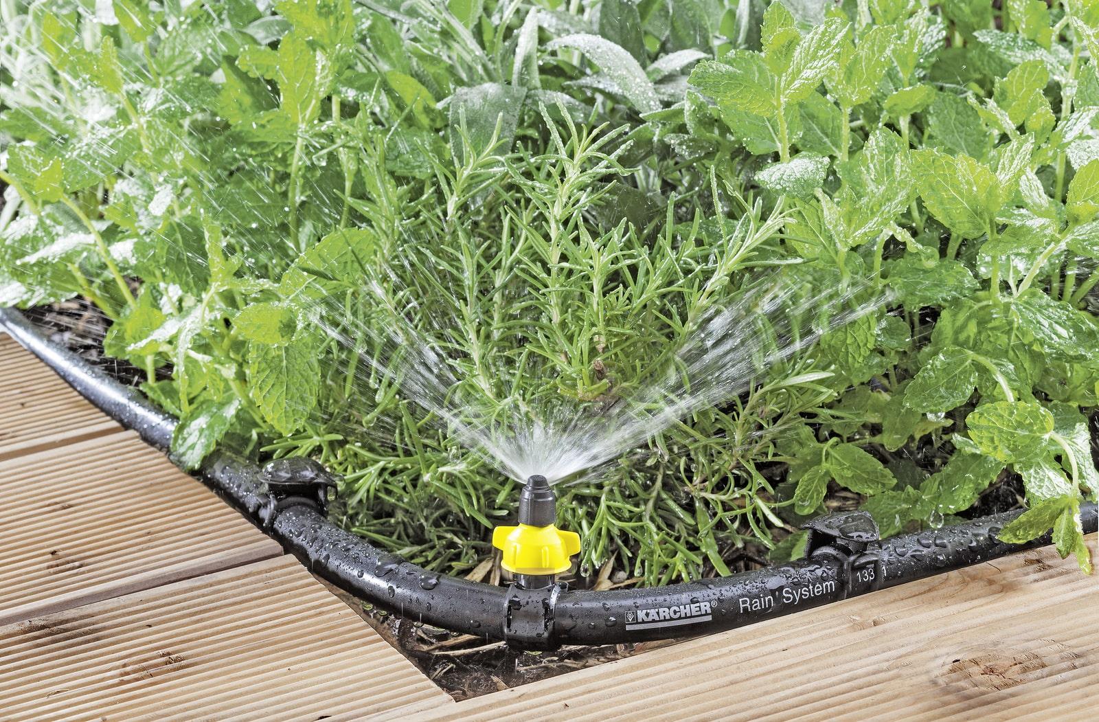Zalivanje vrta - udobje s prihrankom vašega dragocenega časa in denarja